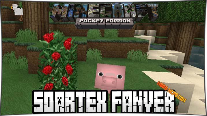 Soartex Fanver 1.2, 1.0